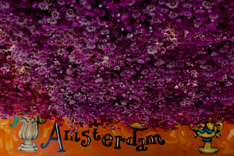 The Amsterdam Flower Market