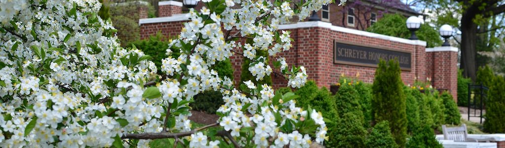 Atherton in Spring